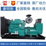 300KW柴油发电机组重庆康明斯NTA855-G1B