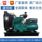 20KW柴油发电机组东风康明斯4B3.9-G1